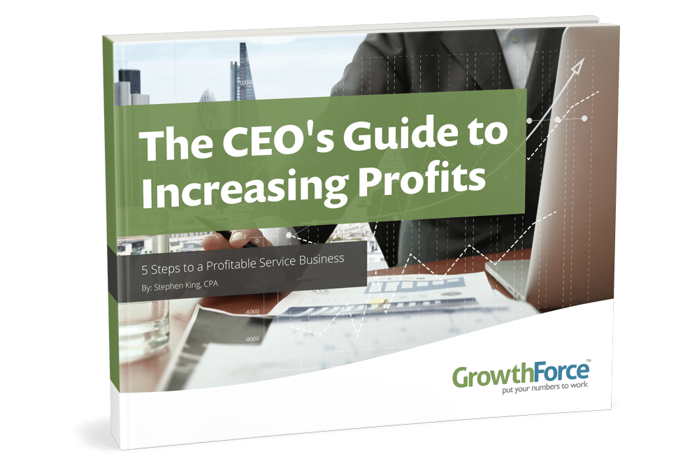 The CEO's Guide to Increasing Profits