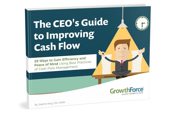 CEO's Guide to Improving Cash Flow