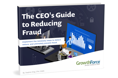 The CEO's Guide to Reducing Fraud