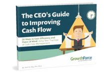 The CEO's Guide to Improving Cash Flow
