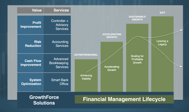 The Financial Management Lifecycle