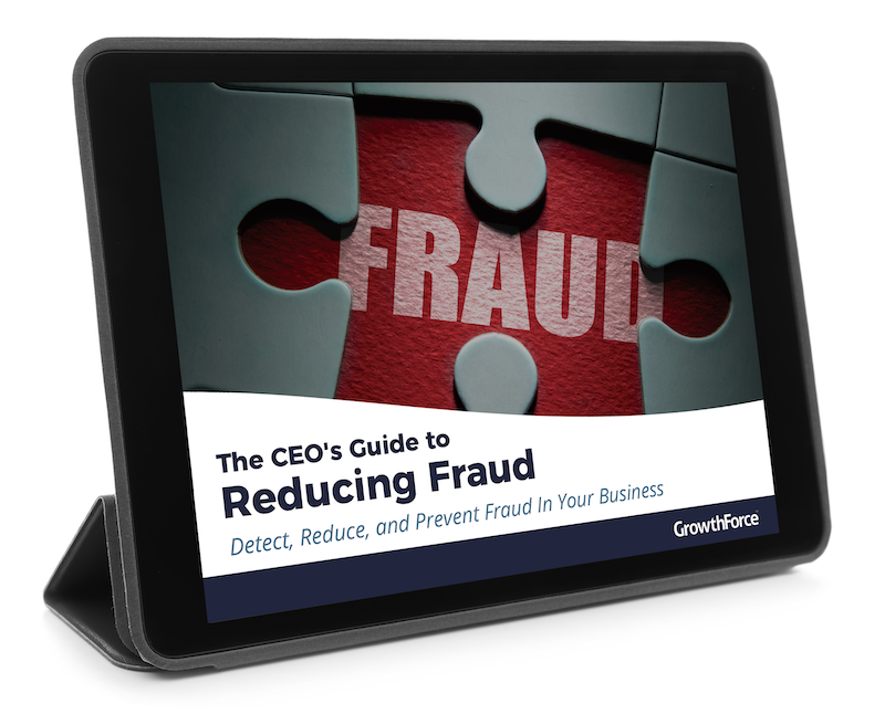 CEOs Guide To Reducing Fraud ipad-1