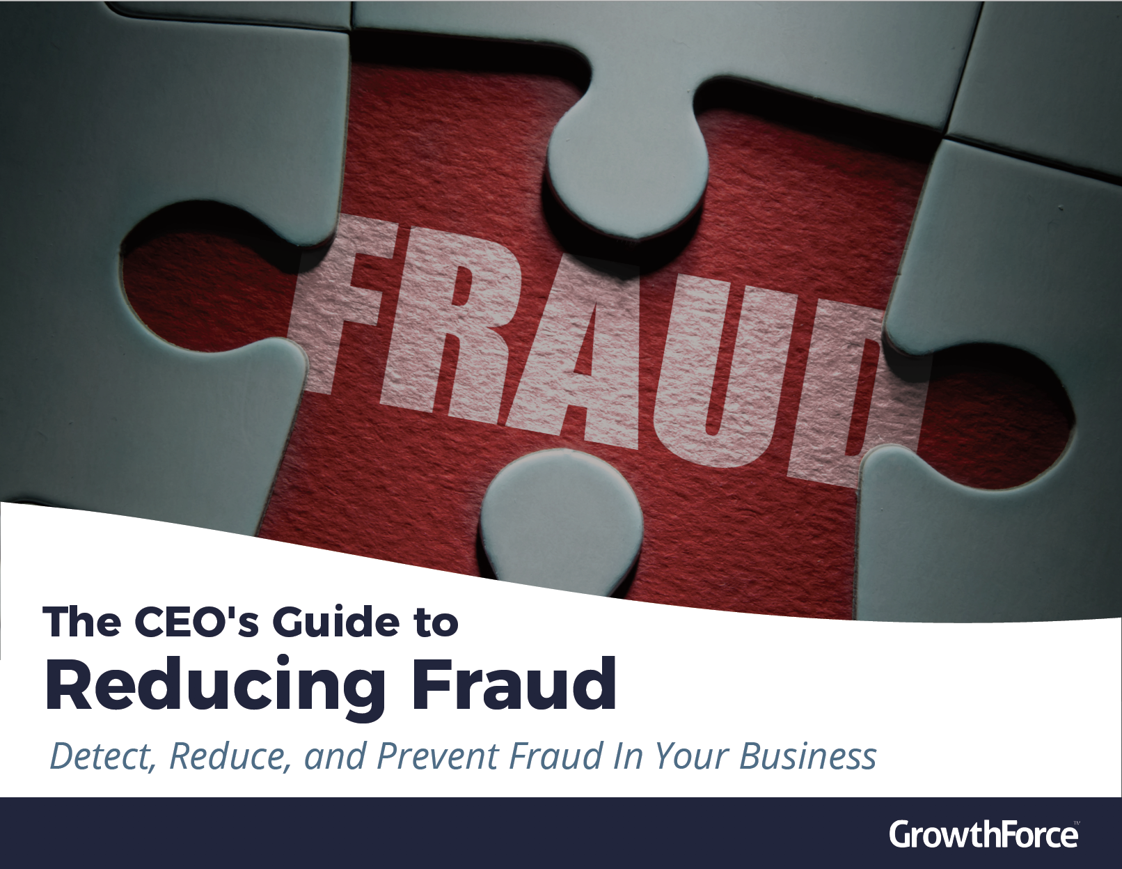 Fraud eBook cover