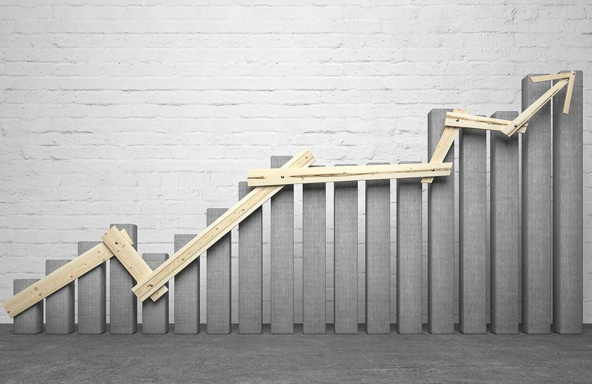 Beyond the Startup: The Growth Phase